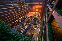 Hilton Hotel Photo